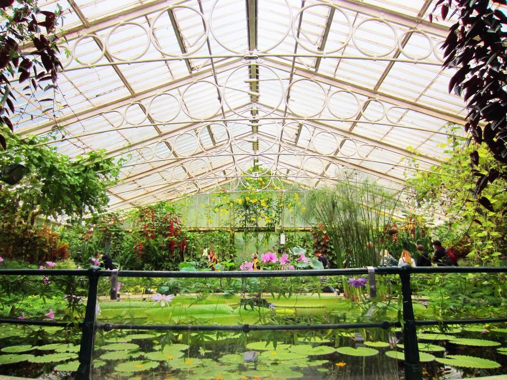 Vasca centrale della Water Lily House