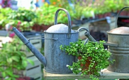 idees de decoration de jardin pas cher