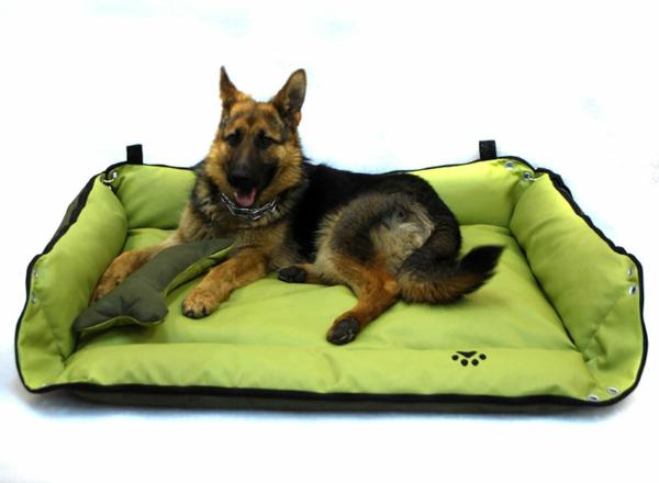 تحليل حقيبة شيك coussin chien grande taille
