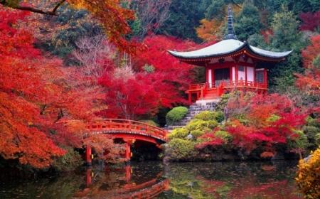 le jardin japonais encore 49 photos