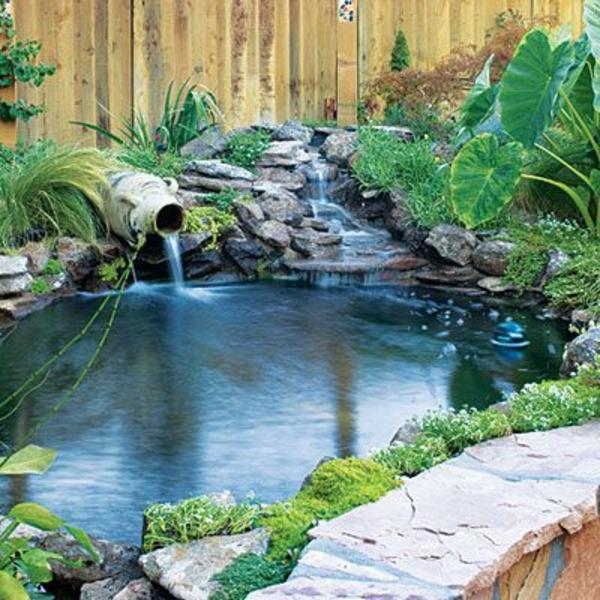 jardin avec une fontaine pour bassin