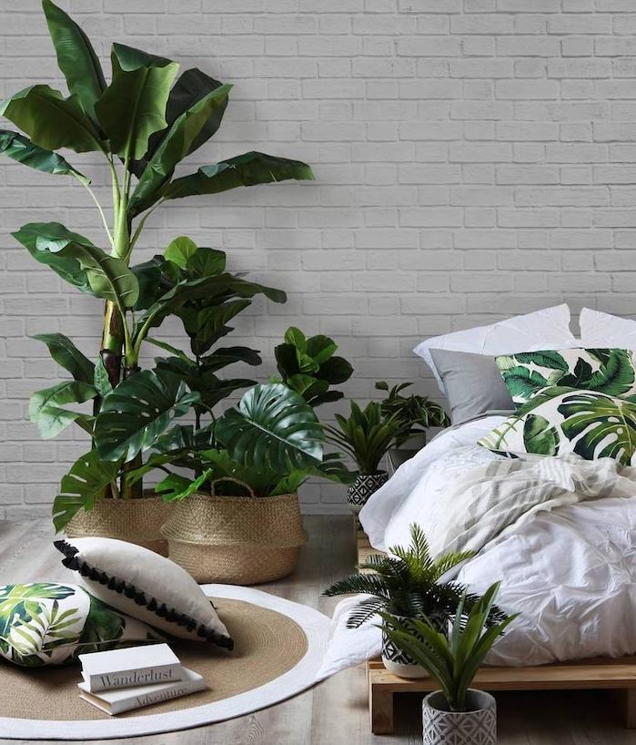 1001 Suggestions De Plante Dintrieur Originale Et