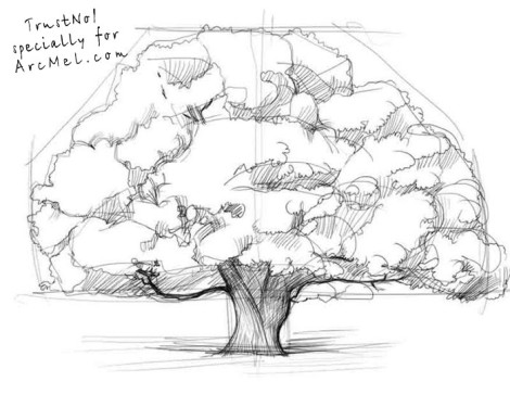 How to draw an oak tree step 3