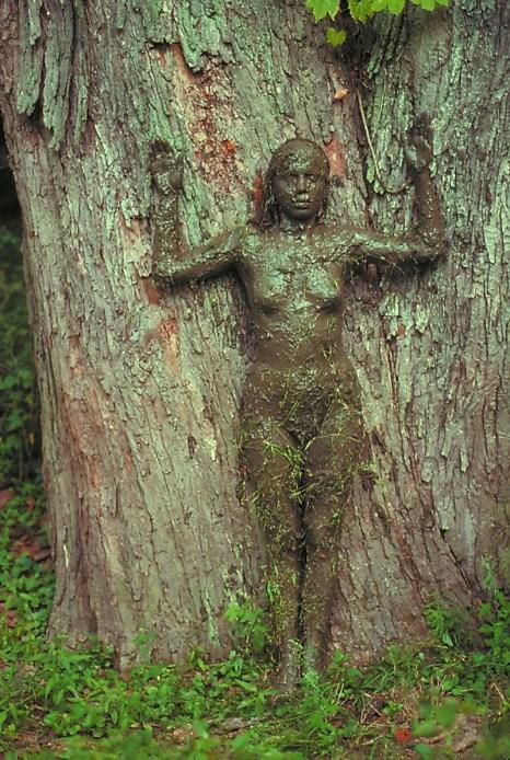 Tree of Life, 1976