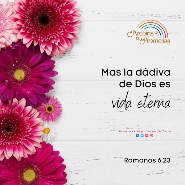 un regalo de salvacion y vida eterna mensaje de aliento para la mujer cristiana