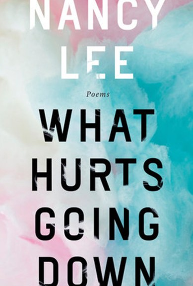 Nancy Lee's What Hurts Going Down