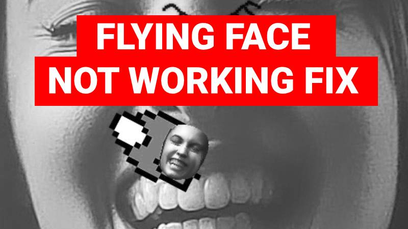 Fix flying face