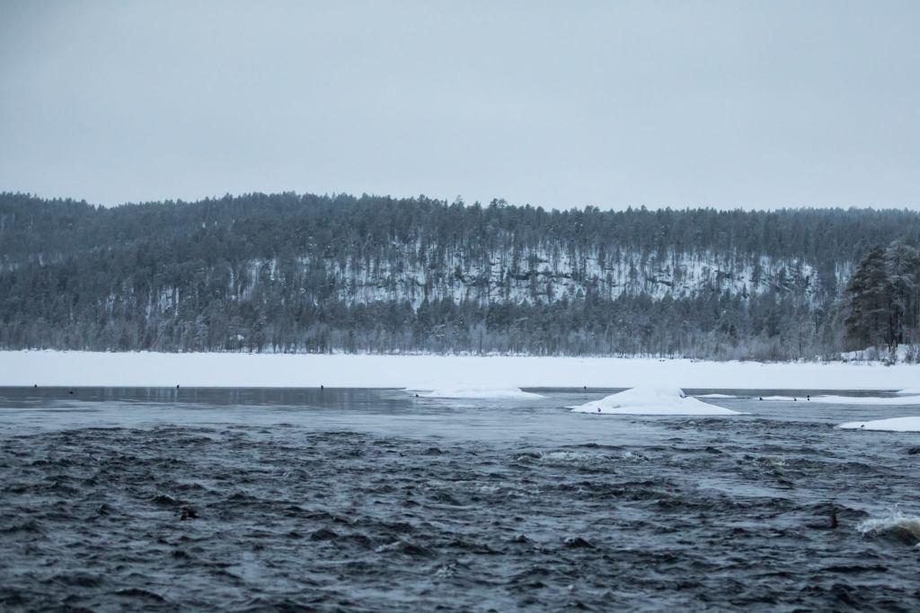 Koskikarat Juutualla Talvi