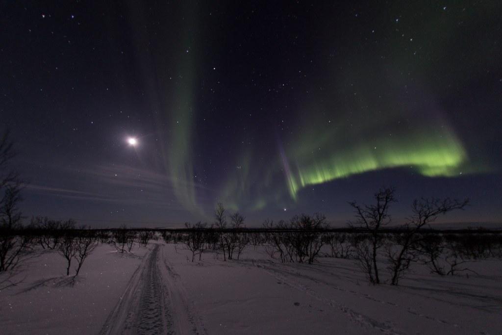 Auroras-0437-2