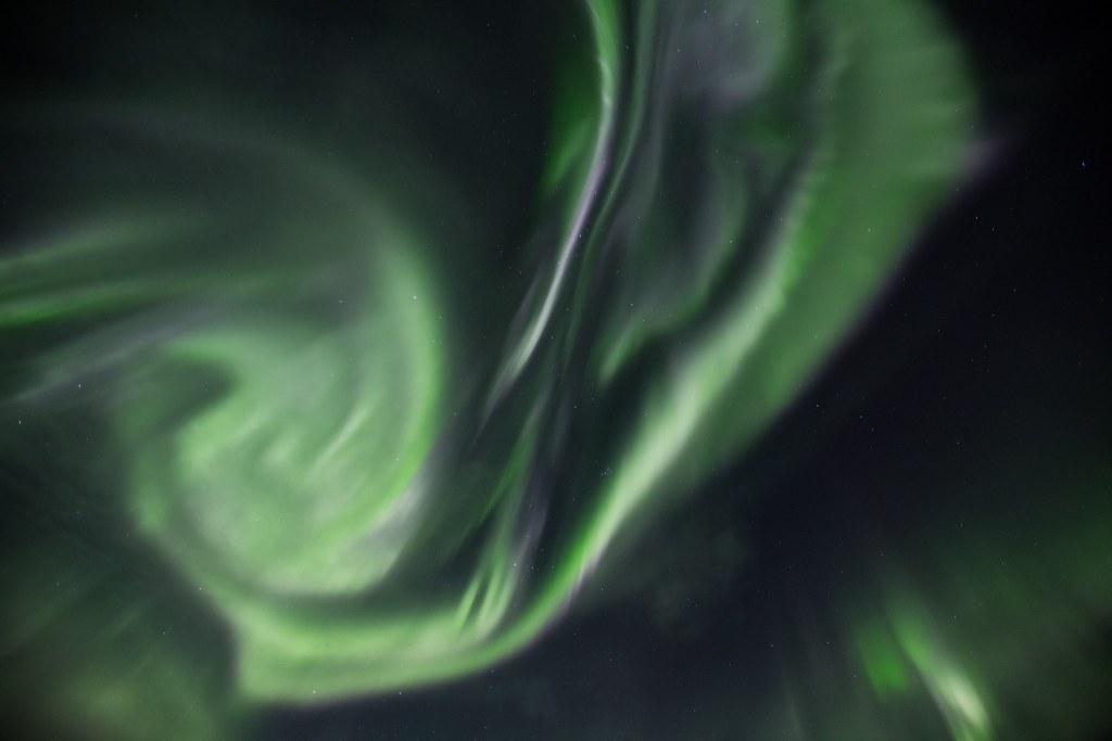 Auroras-8295