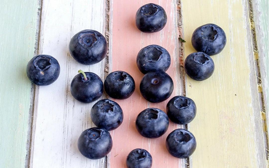 freeze-dried blueberry powder