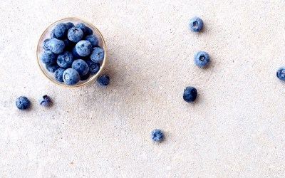 Blueberry Powder Benefits – All You Need to Know