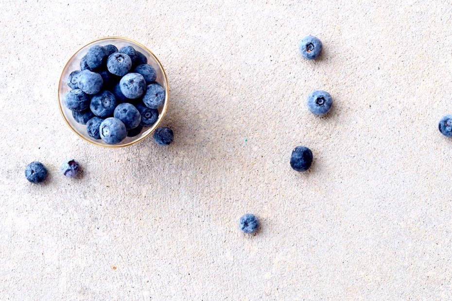 Blueberry Powder Benefits - All You Need to Know about Arctic Flavors wild blueberry powder health benefits.