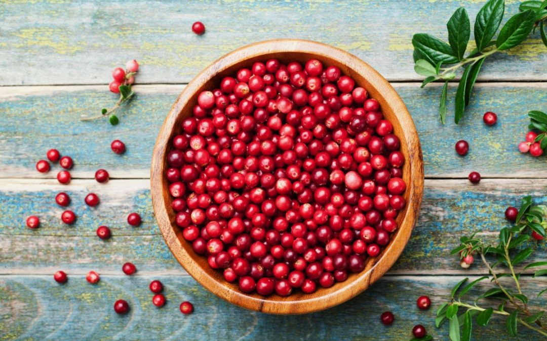 How to find the best cranberry powder - Arctic Flavors