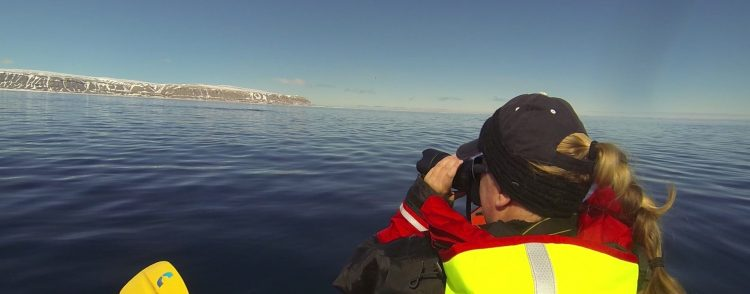 Kayaking in the Arctic With Narwhal | Arctic Kingdom