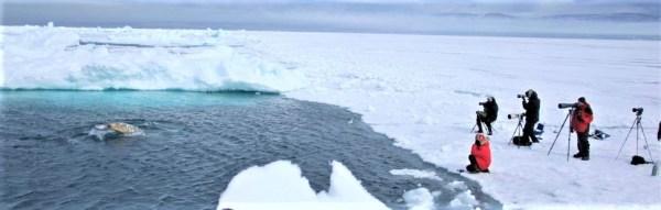 Arctic Kingdom - Our Exclusive Floe Edge Location