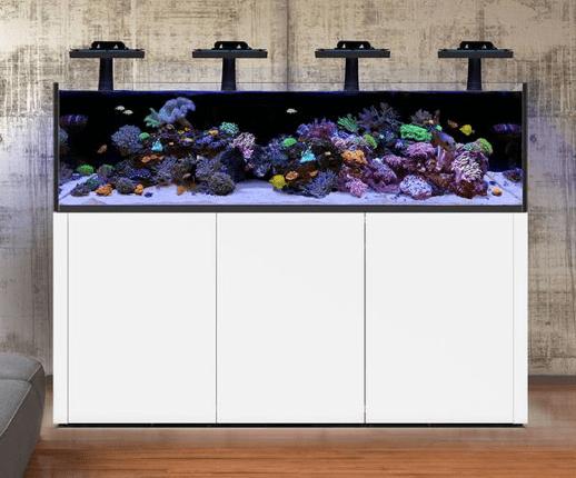 Waterbox Promax Aquarium