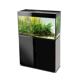 Aquael Glossy Aquarium set
