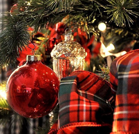Merry Christmas to all friends!