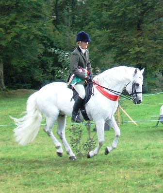 Champion Pony airborne at Oughterard