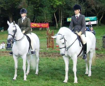 Blackwood Fernando and Tulira Katie Daly Cannonball Champion and Reserve