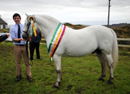 Supreme All Ireland Champion Currachmore Cashel
