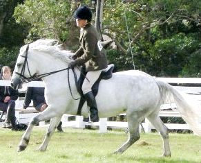 Celtic Myth and Mary Hayden win class G for riders over 21