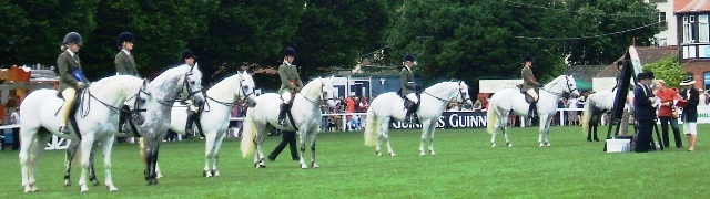 Riding Classes prizewinners line up for Championship