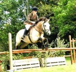 Cashel Bay Benny jumps clear with Emily McCann and takes Reserve