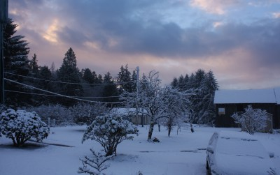Photo of a Winter Sky from my porch