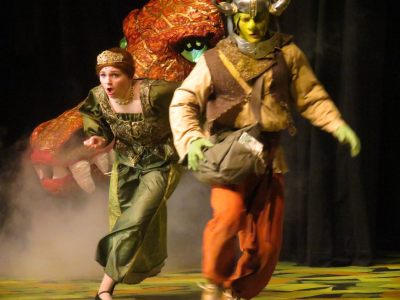 Dragon Chasing Fiona and Shrek