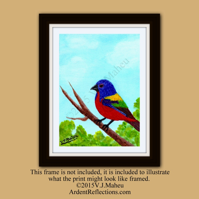 Painted Bunting, Watercolor bird, songbird, print of watercolor, Giclee print, songbird print, colorful songbird, bunting, bird art, Item #PBP1 chickadee, wren, animal, wildlife, bunting,