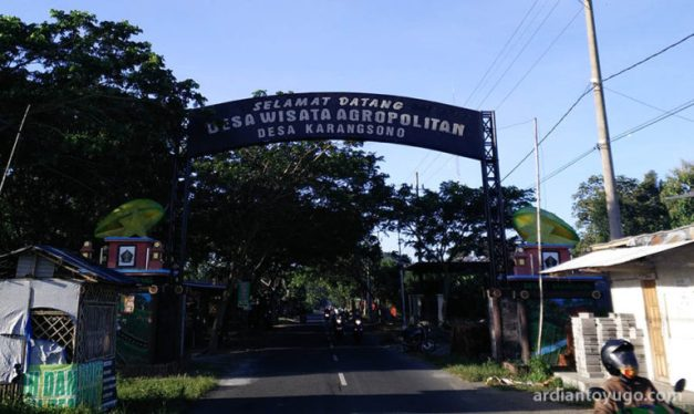 Desa Agropolitan Karangsono