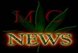 medical marijuana cannabis news