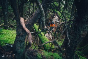 Jessie Mcauley deep in the woods
