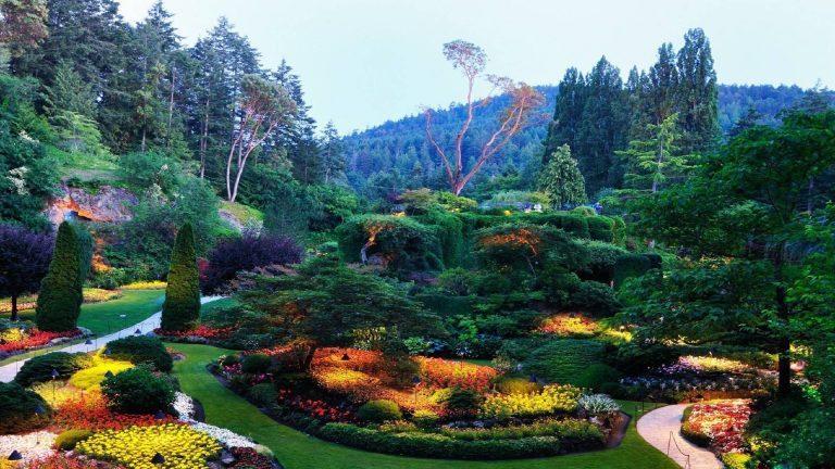 1080p-HD-Wallpaper-Nature-768x432