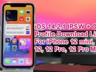 ios 14.2.1 ipsw links