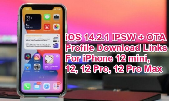 ios 14.2.1 ipsw links