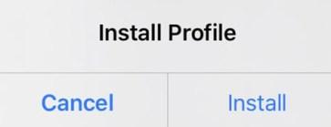 install ios 15 beta profile