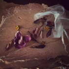 dried blossoms and organza bag on paperbark
