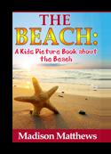 Beach book cover small