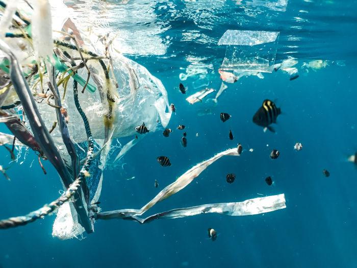 É só reciclar? Expostos enganos comuns relacionados ao plástico