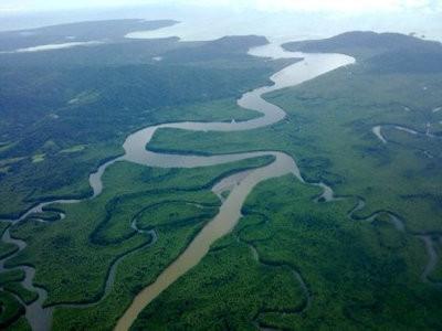 Humedal Nacional Térraba Sierpe
