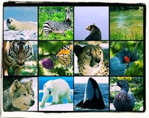 Especies en peligro de extinción (Mundo)