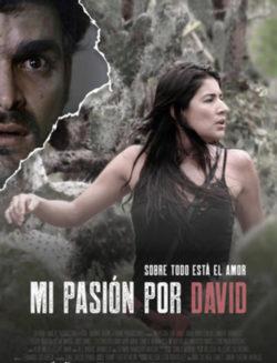 """""""Mi pasión por David"""" de Iván Zuluaga"""