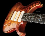 beautiful-guitar-10