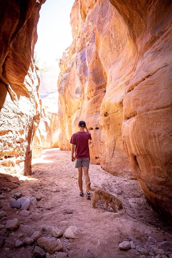 teenage boy hiking in Buckskin Gulch canyon in southern utah with pet cavapoo