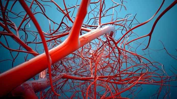 improve blood flow in veins