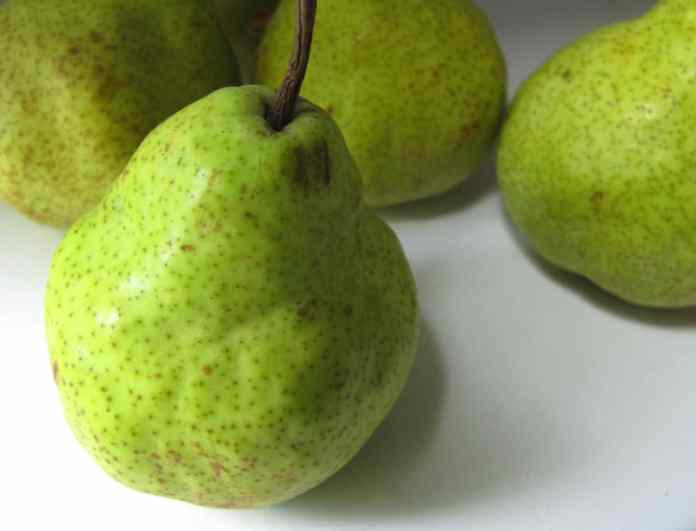spinonews Pear fruit nutrition health benefits