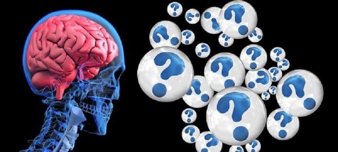 spinonews Brain Pacemaker Can Help Alzheimer's